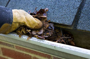 Gutter Cleaning Exmouth Devon