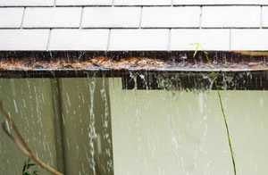 Gutter Clearance Consett UK