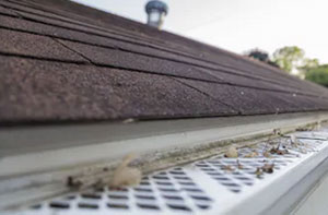 Gutter Maintenance Near Me Worthing