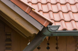 Gutter Maintenance New Romney (01797)