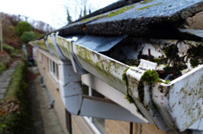 Gutter Clearance Livingston UK
